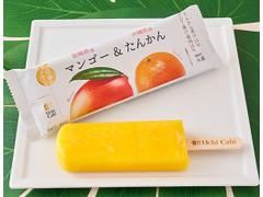 Uchi Cafe' 日本のフルーツ 宮崎県産マンゴー&沖縄県産たんかん位